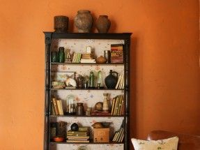 Perdele si tapet Sanderson – Galapagos WP Bookcase